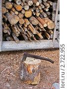 Купить «Дрова в сарае и топор», фото № 2722955, снято 14 июля 2011 г. (c) Валерия Попова / Фотобанк Лори