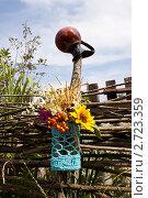Купить «Букет полевых цветов  на плетеном заборе», фото № 2723359, снято 14 августа 2011 г. (c) Ольга Аристова / Фотобанк Лори