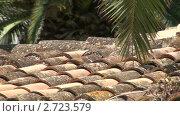 Купить «Черепичная крыша», видеоролик № 2723579, снято 11 ноября 2009 г. (c) Виталий Романович / Фотобанк Лори