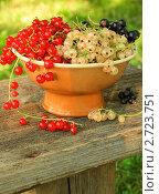 Красная, черная и белая смородина в вазе в саду. Стоковое фото, фотограф Светлана Зарецкая / Фотобанк Лори