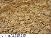 Обрывистый берег. Стоковое фото, фотограф Медведев Михаил / Фотобанк Лори