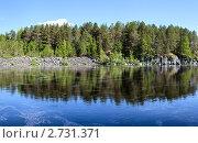 Купить «Берег реки в Карелии», фото № 2731371, снято 4 июня 2011 г. (c) Кекяляйнен Андрей / Фотобанк Лори