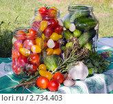 Купить «Консервирование овощей», фото № 2734403, снято 15 августа 2011 г. (c) Наталья Райхель / Фотобанк Лори