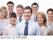 Купить «Бизнес-команда», фото № 2739295, снято 1 июня 2011 г. (c) Raev Denis / Фотобанк Лори