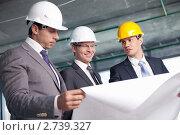 Купить «Инженеры-строители», фото № 2739327, снято 1 июня 2011 г. (c) Raev Denis / Фотобанк Лори
