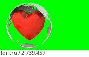 Вращающийся шар с пульсирующим сердцем внутри на зеленом фоне. Стоковая анимация, видеограф Zelfit / Фотобанк Лори