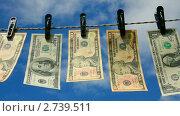 Купить «Доллары сушатся на веревке», видеоролик № 2739511, снято 8 августа 2011 г. (c) Михаил Коханчиков / Фотобанк Лори