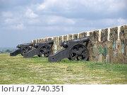 Купить «Старинные пушки на крепостном валу в Азове», фото № 2740351, снято 19 августа 2011 г. (c) Борис Панасюк / Фотобанк Лори