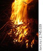 Пламя костра на тёмном фоне. Стоковое фото, фотограф Боровитина Екатерина / Фотобанк Лори