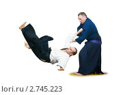 Купить «Спарринг двух бойцов джиу-джитсу», фото № 2745223, снято 20 апреля 2018 г. (c) Дмитрий Калиновский / Фотобанк Лори