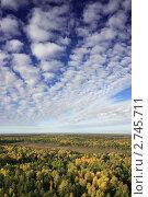 Осенний лес, фото № 2745711, снято 28 февраля 2017 г. (c) Владимир Мельников / Фотобанк Лори