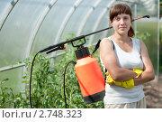 Купить «Девушка на даче с опрыскивателем», фото № 2748323, снято 3 июля 2011 г. (c) Яков Филимонов / Фотобанк Лори