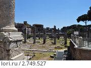 Руины древнего Рима. Форум (2011 год). Стоковое фото, фотограф Igor5 / Фотобанк Лори