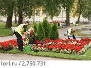 Купить «Посадка цветов работниками городского коммунального хозяйства в парке», эксклюзивное фото № 2750731, снято 13 июля 2011 г. (c) Валерия Попова / Фотобанк Лори