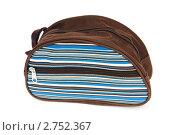 Купить «Женская сумочка», фото № 2752367, снято 14 апреля 2010 г. (c) Elnur / Фотобанк Лори