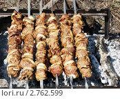 Купить «Шашлык на мангале», фото № 2762599, снято 1 мая 2010 г. (c) Артем Поваров / Фотобанк Лори