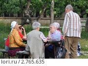 """Купить «""""Посиделки"""" пенсионеров», фото № 2765635, снято 28 июня 2011 г. (c) Вячеслав Палес / Фотобанк Лори"""