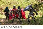 Купить «Битва рыцарей», фото № 2770859, снято 5 июня 2010 г. (c) Яков Филимонов / Фотобанк Лори
