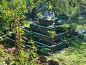 Выращивание клубники на ярусной грядке, эксклюзивное фото № 2772611, снято 2 сентября 2011 г. (c) Анна Мартынова / Фотобанк Лори