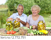 Купить «Пара пожилых людей в саду», фото № 2772751, снято 14 августа 2011 г. (c) Алексей Кузнецов / Фотобанк Лори
