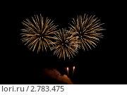 Праздничный салют (фейерверк) Стоковое фото, фотограф Татьяна Метельская / Фотобанк Лори