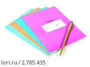 Школьные тетради и шариковая ручка. Стоковое фото, фотограф Дмитрий Куш / Фотобанк Лори
