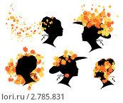 Осенняя красота. Стоковая иллюстрация, иллюстратор Евгения Малахова / Фотобанк Лори