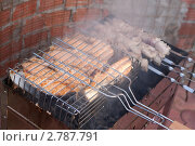 Шашлык из семги на решетке. Стоковое фото, фотограф Шарипова Лилия / Фотобанк Лори