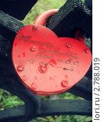Замок в виде сердца-символ любви. Стоковое фото, фотограф Дарья Безденежных / Фотобанк Лори