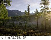 Купить «Восточный Саян. Таежное озеро на рассвете. Тропа на Шумак.», фото № 2788459, снято 31 августа 2011 г. (c) Sergey / Фотобанк Лори