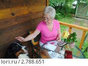 Купить «Сейчас подсчитаю и пойдем гулять. Женщина и собака», фото № 2788651, снято 16 июля 2011 г. (c) Татьяна Юни / Фотобанк Лори