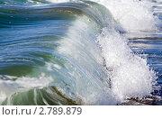 Купить «Океанская волна», фото № 2789879, снято 11 сентября 2011 г. (c) RedTC / Фотобанк Лори