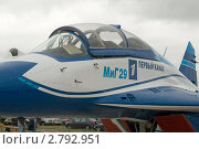 Купить «Фрагмент самолёта МиГ-29 с логотипом 1-го канала, авиасалон в Жуковском МАКС-2009», фото № 2792951, снято 21 августа 2009 г. (c) Малышев Андрей / Фотобанк Лори