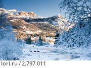 Купить «Волшебная зима», фото № 2797011, снято 18 ноября 2010 г. (c) Виталий Романович / Фотобанк Лори
