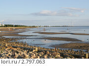 Купить «Балтийское море вечером во время отлива», фото № 2797063, снято 30 июля 2011 г. (c) Валерия Попова / Фотобанк Лори