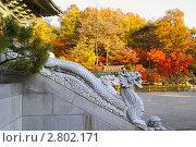 Купить «Каменные скульптуры драконов на лестнице буддистского храма на фоне осеннего пейзажа. Корея. Сеул», фото № 2802171, снято 10 ноября 2008 г. (c) Ольга Липунова / Фотобанк Лори