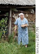 Купить «Пожилая женщина около сарая», фото № 2807791, снято 13 августа 2011 г. (c) Михаил Иванов / Фотобанк Лори