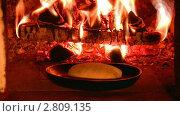 Купить «Выпечка хлеба в традиционной русской печке», видеоролик № 2809135, снято 18 марта 2010 г. (c) Андрей Ежов / Фотобанк Лори