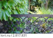 Купить «Балчик, ботанический сад, ограда», фото № 2817831, снято 23 августа 2011 г. (c) Татьяна Юни / Фотобанк Лори