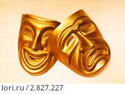 Купить «Золотистые театральные маски», фото № 2827227, снято 6 мая 2011 г. (c) Elnur / Фотобанк Лори
