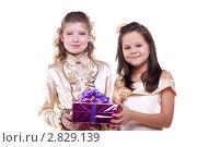 Купить «Подружки с подарком», фото № 2829139, снято 5 ноября 2010 г. (c) lanych / Фотобанк Лори