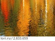 Купить «Осенние деревья красиво отражаются в воде», фото № 2833659, снято 7 октября 2010 г. (c) Сычёва Виктория / Фотобанк Лори