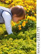Купить «Ребенок нюхает живые цветы», фото № 2833771, снято 25 мая 2020 г. (c) WalDeMarus / Фотобанк Лори
