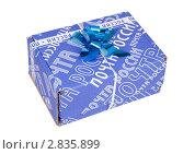 Купить «Почтовая коробка с синим бантом», эксклюзивное фото № 2835899, снято 1 октября 2011 г. (c) Александр Щепин / Фотобанк Лори