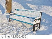 Скамейка под снегом. Стоковое фото, фотограф Анатолий Баранов / Фотобанк Лори