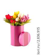 Купить «Подарочная коробка с букетом тюльпанов», фото № 2836915, снято 29 июня 2011 г. (c) Elnur / Фотобанк Лори