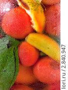 Купить «Консервированные помидоры», фото № 2840947, снято 15 сентября 2011 г. (c) Павел Коновалов / Фотобанк Лори
