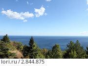 Купить «Крым, вид на море», эксклюзивное фото № 2844875, снято 10 сентября 2011 г. (c) Дмитрий Неумоин / Фотобанк Лори