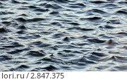 Купить «Поверхность воды», видеоролик № 2847375, снято 5 октября 2011 г. (c) Сергей Лаврентьев / Фотобанк Лори
