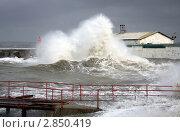 Купить «Шторм на море», фото № 2850419, снято 11 ноября 2007 г. (c) Кирилл Путченко / Фотобанк Лори